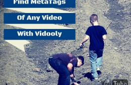 Find MetaTags Of Any YouTube Video With Vidooly_1