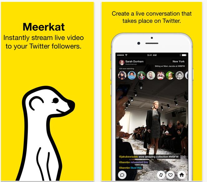 meerkat and twitter