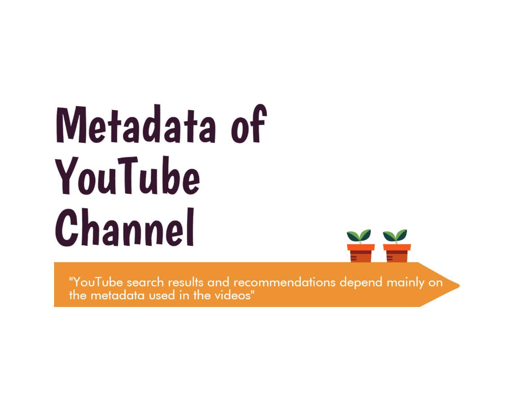 How to boost your YouTube search ranking using the right Metadata? [Infographic]