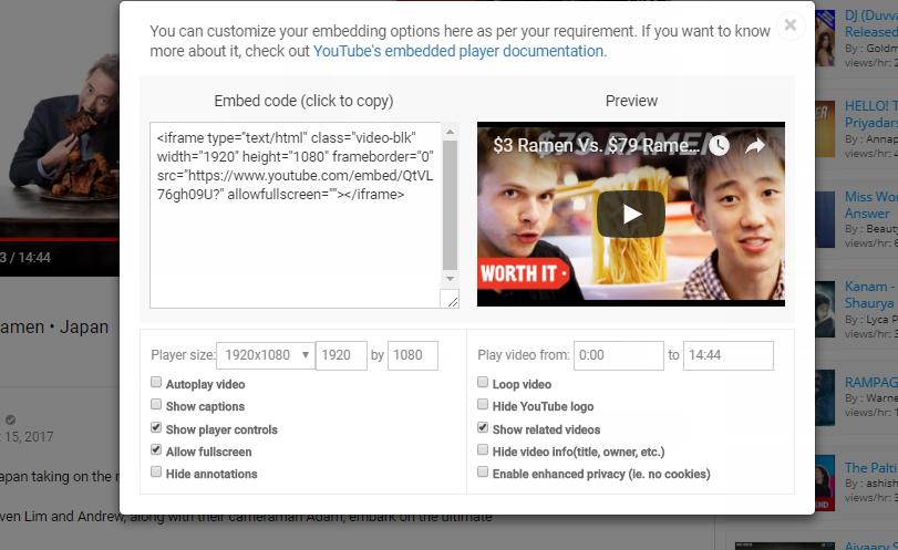 Video Embedding options - VidLog