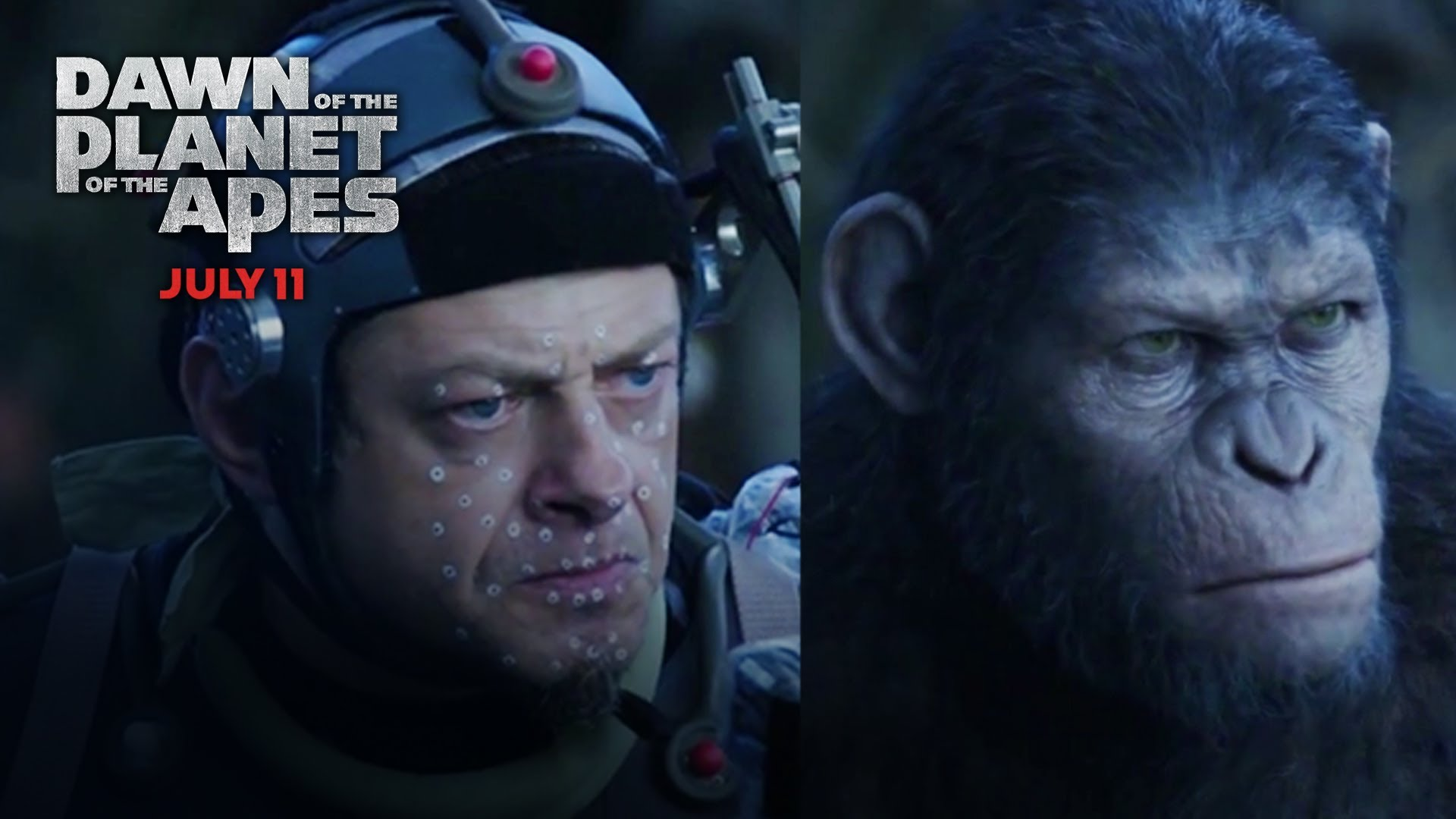 Dawn of the Planet of the Apes   Ape Evolution