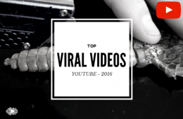 top 10 viral videos on YouTube