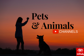 pets and animals YouTube channels