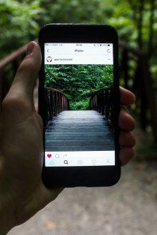 instagram algorithm work