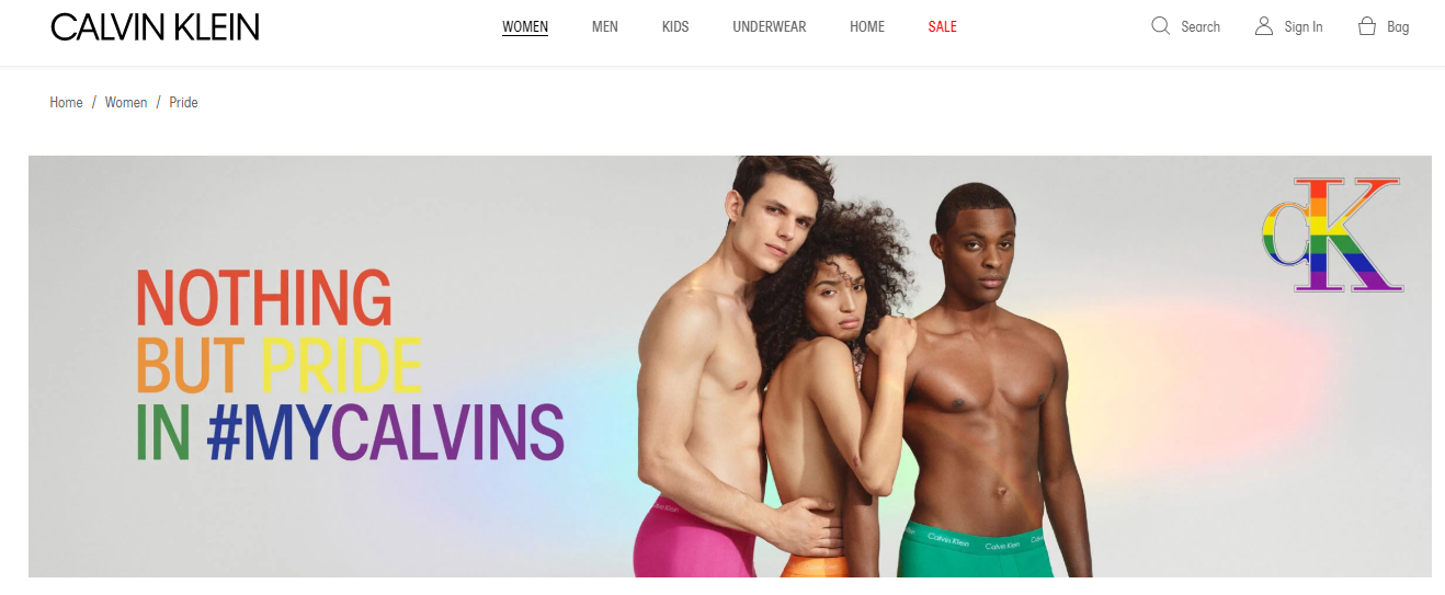 CK campaign on How Brands are Remarketing their LGBT Support